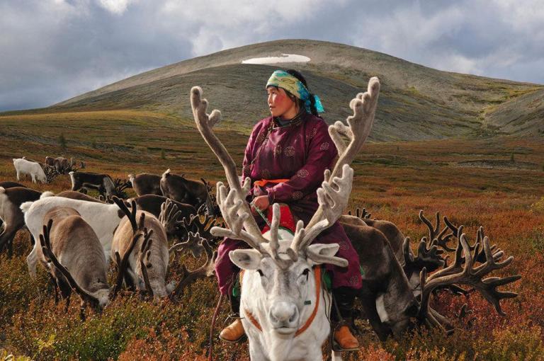 la-vida-de-los-mongoles-con-sus-renos-2